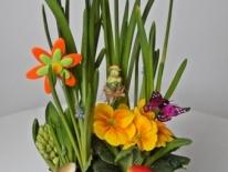 Aranjament plante naturale 03