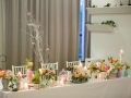 TWC-nunta-copacei-fermecati-007