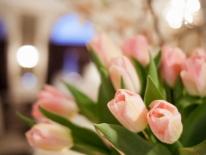 Wolford-aranjament-floral-web-008