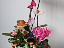 Aranjament plante naturale 08
