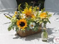 TWC-Sunflower-botez-002
