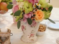 Ceainic hortensie