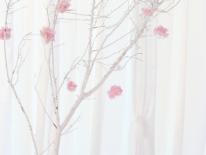 Copac cu hortensie